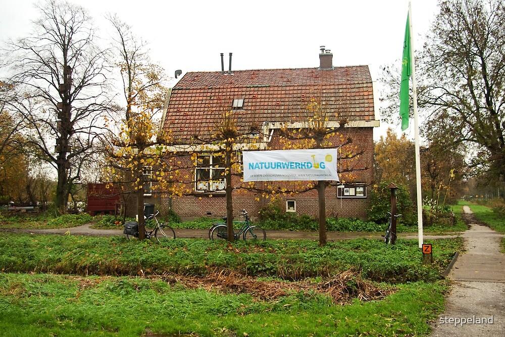 Nature Work Day 01 - Nov.6, 2010 by steppeland