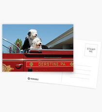 Fire Dogs Postcards