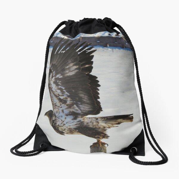 Take to the Air Drawstring Bag