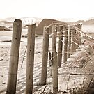 Beach Fence by pennyswork