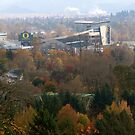 View of Eugene by ruthbacker
