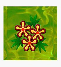 Flower - Green Photographic Print