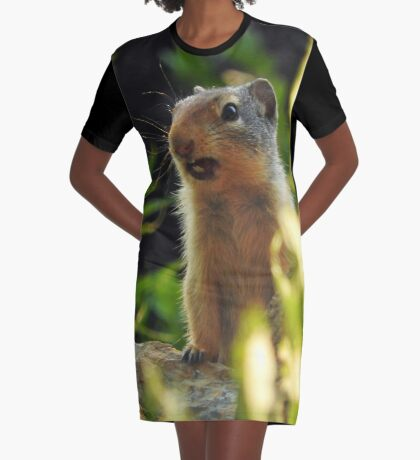 Good Morning Sunshine Graphic T-Shirt Dress