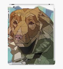 Nova Scotia Geometric iPad Case/Skin