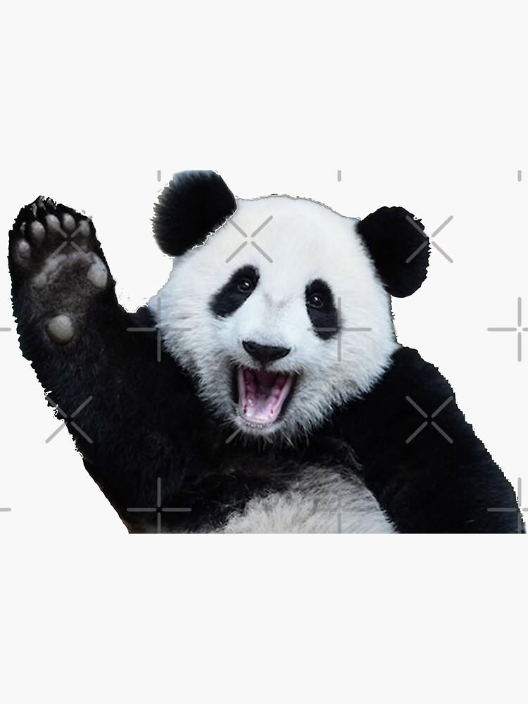 cute panda waving  by pgracew