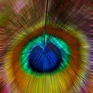Colour Burst  by Michelle Crouch