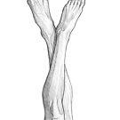 Long legs - line art pencil sketch by MadliArt
