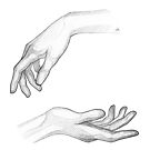 Hands - line art pencil sketch by MadliArt