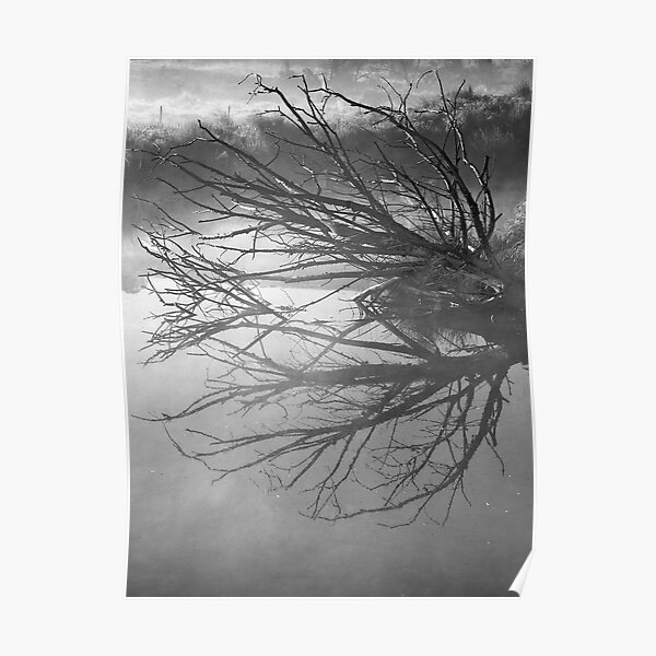 Damn Reflections in black & white Poster