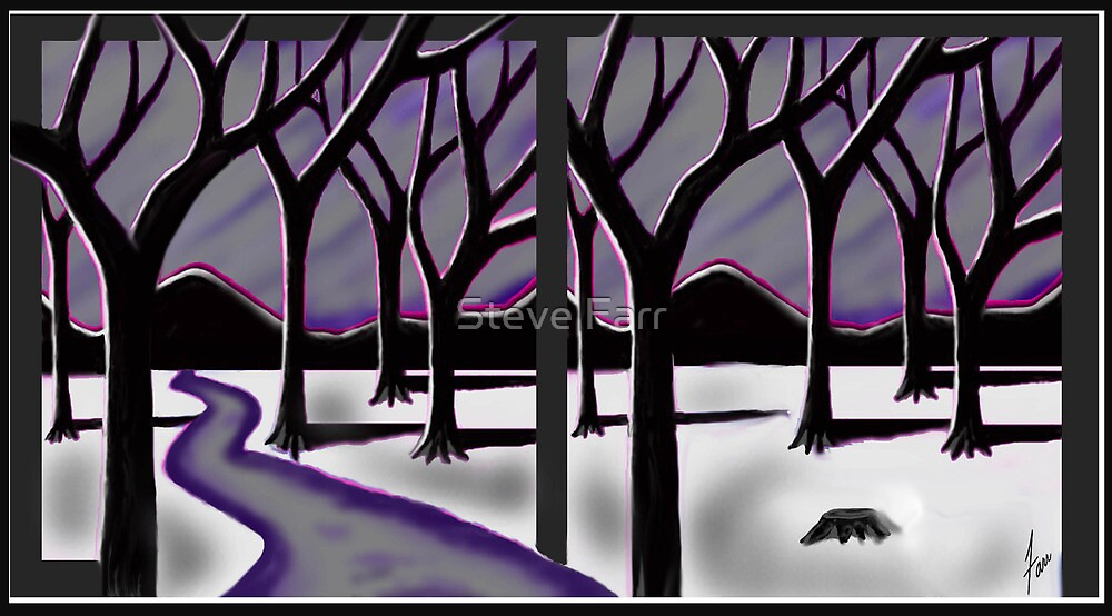 """""""Winter Path Forest"""" by Steve Farr"""