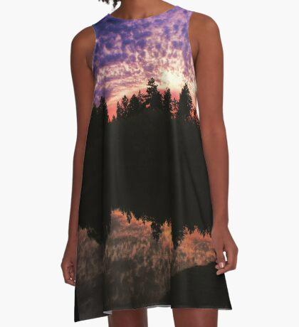 Purple Sky A-Line Dress