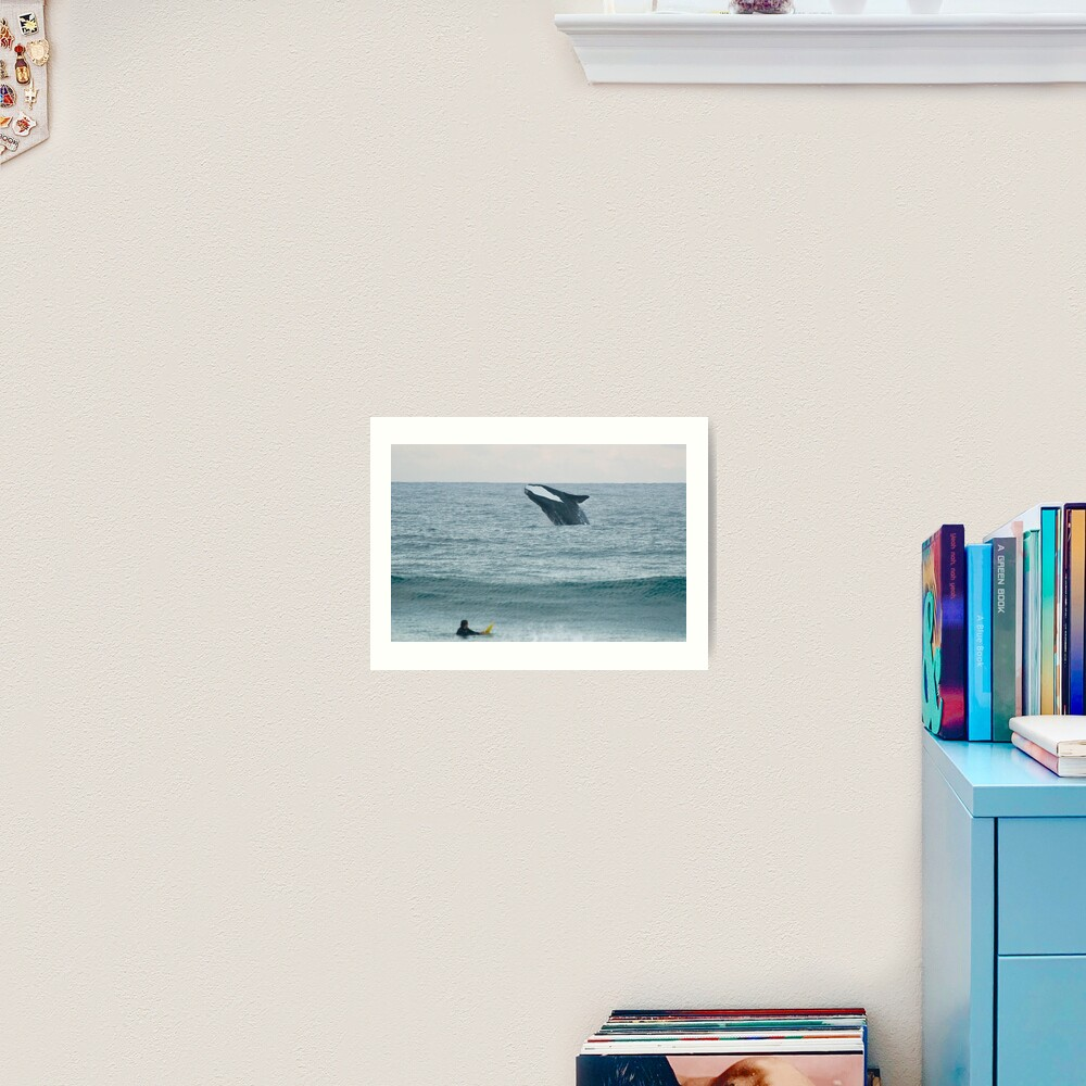Southern Right Whale Art Print