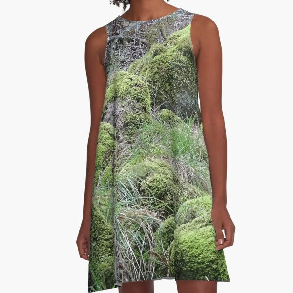 The non rolling stones A-Line Dress