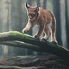 Iberian Lynx - digital painting by MadliArt