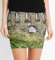 The Newness Has worn Off Mini Skirt