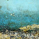 Barnacle landscape by Catherine Hadler