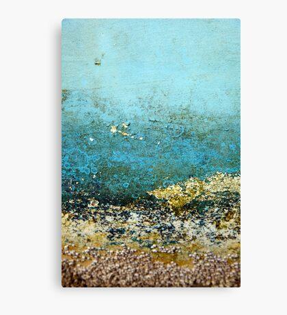 Barnacle landscape Canvas Print