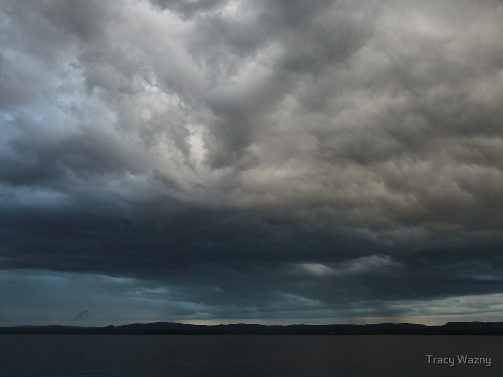 Storm Rolling In From Quebec by Tracy Wazny