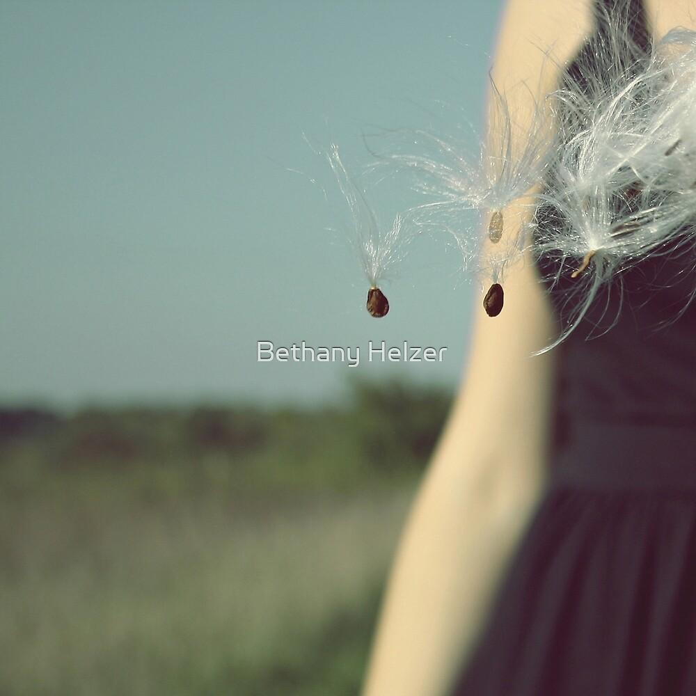 Milkweed Take Flight by Bethany Helzer