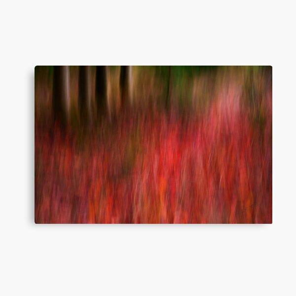 Autumn has FALLen Canvas Print