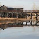Old Railway Bridge and  Barn, Omemee Ontario Canada by Tracy Wazny