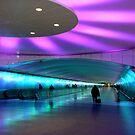 Tunnel of Light I by Elizabeth Hoskinson