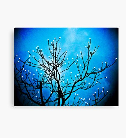 Dream Tree Canvas Print