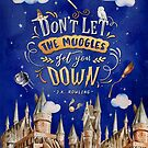 Don't let the muggles by Stella Bookish Art