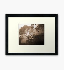 Misty Binna Burra Framed Print