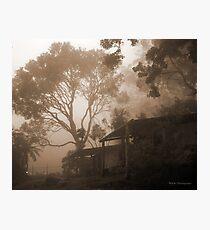 Misty Binna Burra Photographic Print