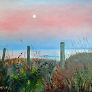 Moonrise Sunset by Scott Plaster