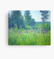 Alex in the field Canvas Print