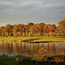 Colourful Autumn by Marias-World