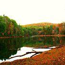 The Hidden Lagoon by Chelei