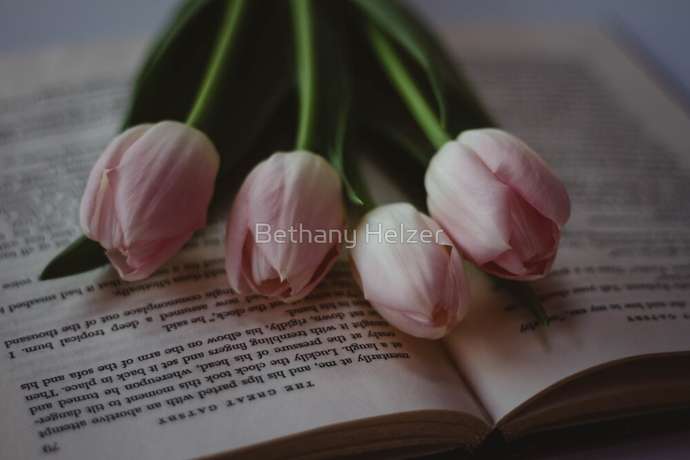 Tulips and Literature by Bethany Helzer