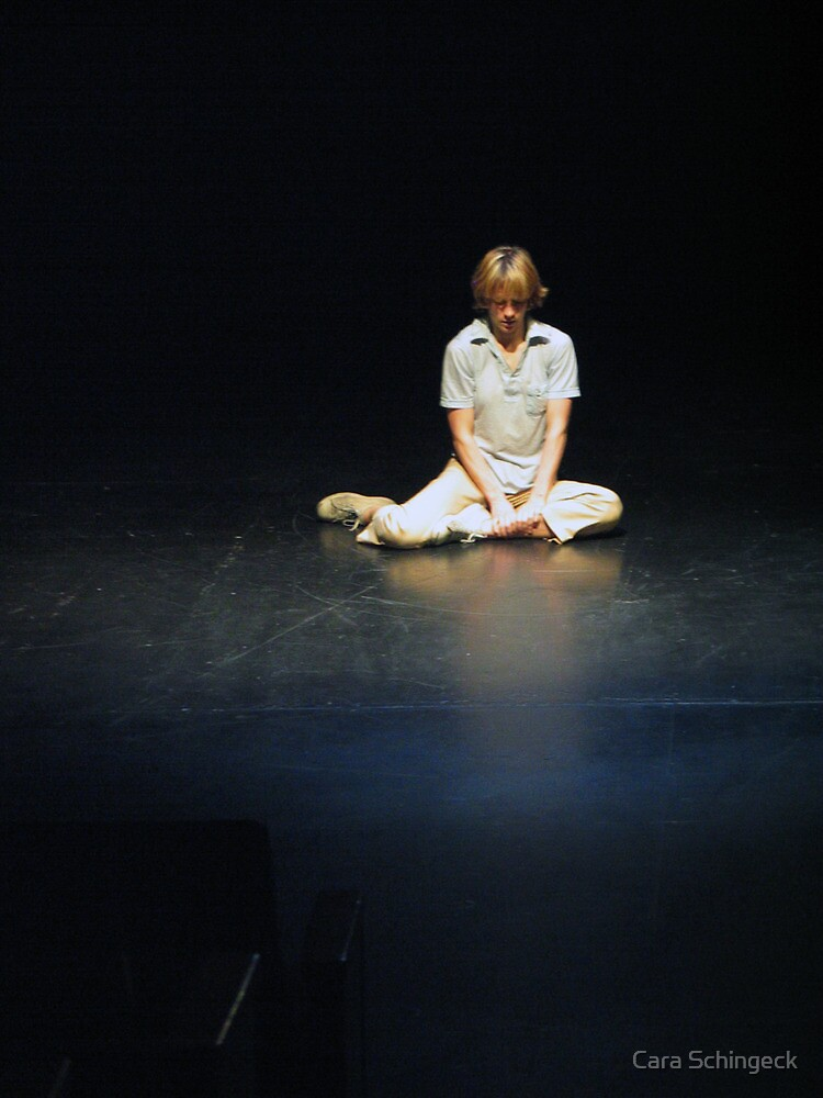 To Gain Trust of a Performance Artist by Cara Schingeck