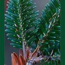 Iloista joulua by finnarct