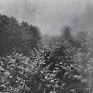 Snowstorm by Alice  Teeple