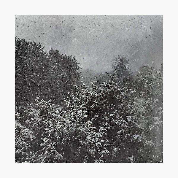 Schneesturm Fotodruck