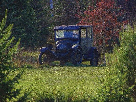 Woodland Cruiser by wiscbackroadz