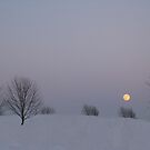 Moon Shining Over The Snow by Linda Miller Gesualdo