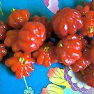 Brazilian Cherries by D. D.AMO