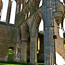 Rievaulx Arches by Trevor Kersley