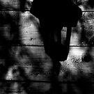Lantern and shadows by Andrey Kudinov