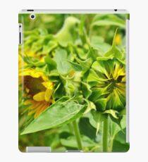 Sunshine Superman iPad Case/Skin