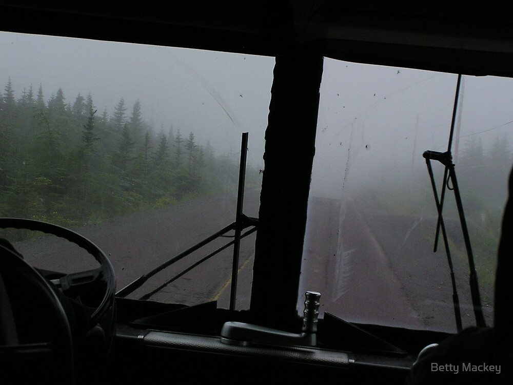 The Bus to Cape St. Mary, Newfoundland by Betty Mackey