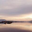 Winter Calm - Mountshannon, Ireland by Orla Flanagan