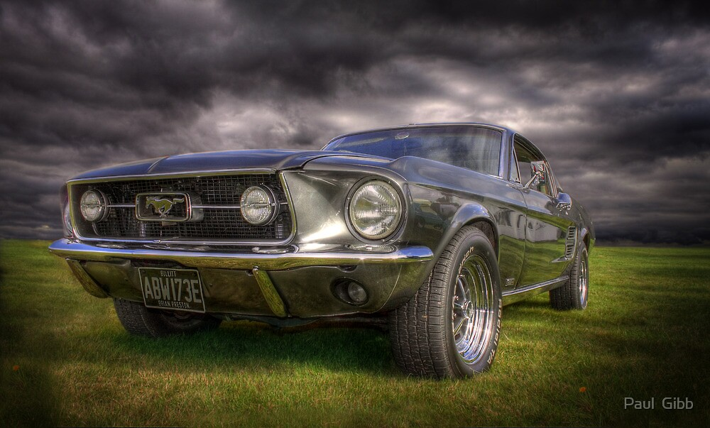 Mighty Mustang by Paul  Gibb