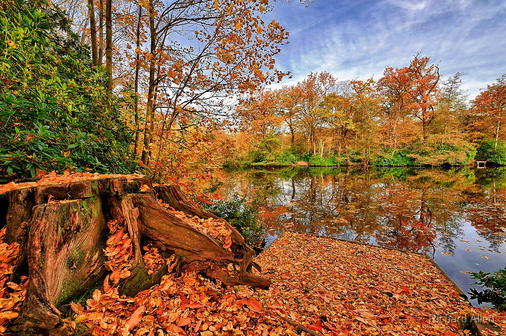 Forty Hall Autumn by Lea Valley Photographic