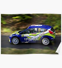 Rally of France 2010 Kuipers D. Poster